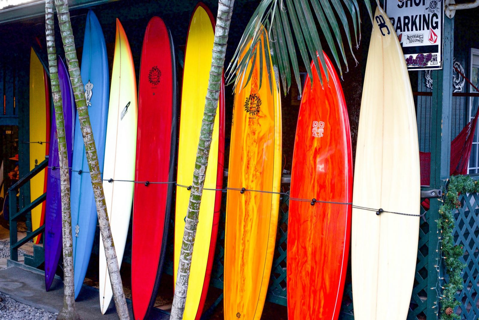 Which Are The Best Surfboards Brands Totalsurfcamp