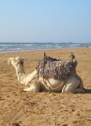 Playa de Marruecos