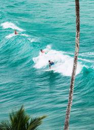 Surfers Midigama Sri Lanka