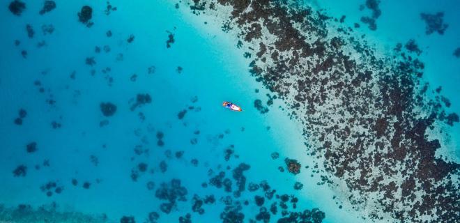 surfistas y ecologistas