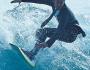 Surf y Coworking en un surfcamp ¿por qué no?