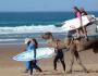 Surfcamp Blue Morocco Surf School in Esauira, Esauira, Marruecos