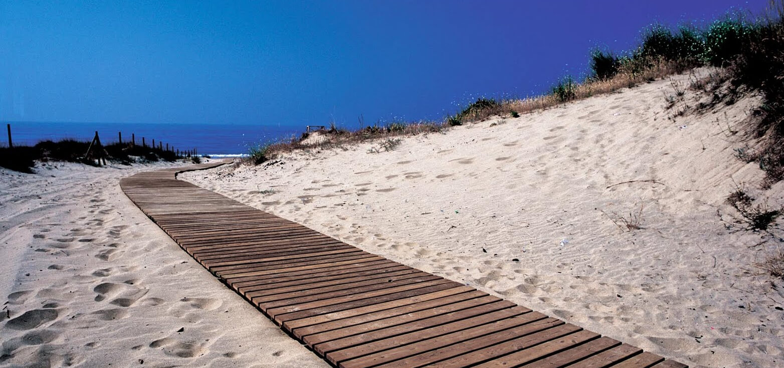Surfcamp Wind Zone in Isla Cristina, Andalucia, España